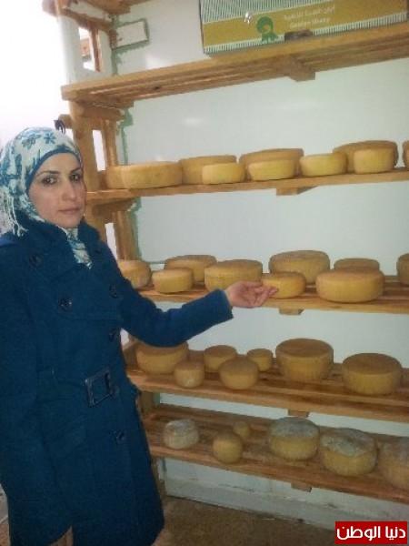 بالصور:صناعة الجبنة الايطالية بأيادي فلسطينية لتنافس الأجبان الاسرائيلية 3909897328.jpg