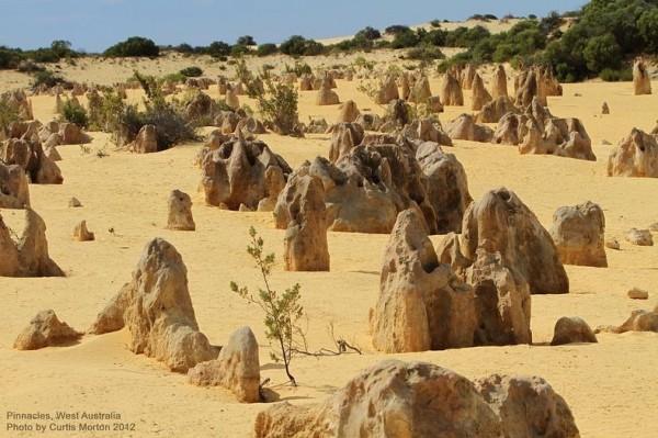 الصحراء الأعمدة الحجرية الجيرية حديقة نامبونج الوطنية استراليا 3909899839.jpg