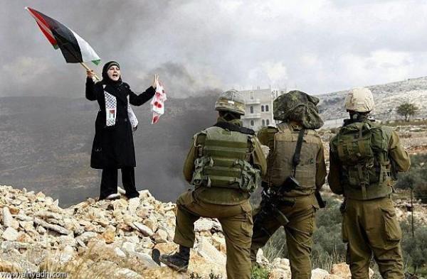 سترى فلسطين مكان