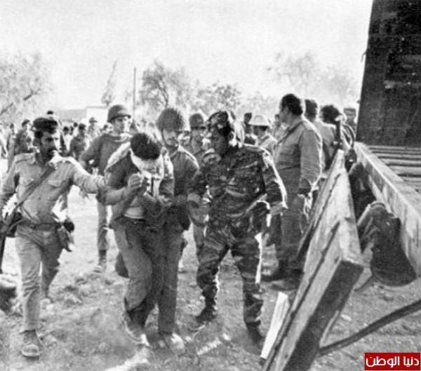 نادرةلحرب 1973 تعرض لأول عاماً 3909959732.jpg