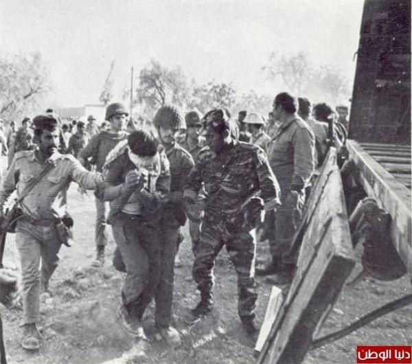 نادرةلحرب 1973 تعرض لأول عاماً 3909959759.jpg