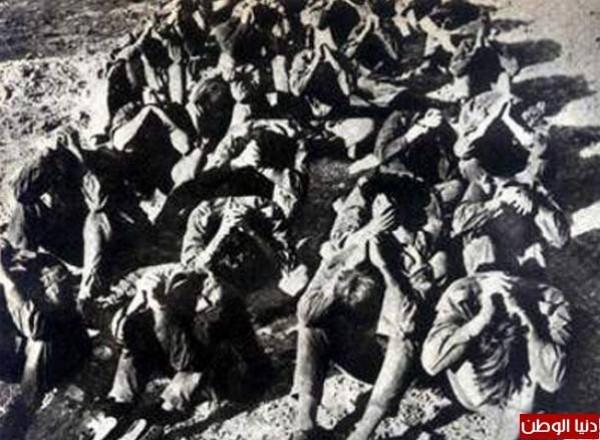 نادرةلحرب 1973 تعرض لأول عاماً 3909959768.jpg
