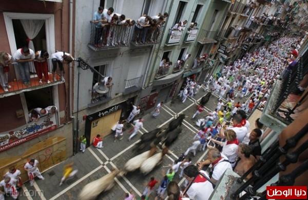 رهيبة مهرجان مطاردة الثيران اسبانيا 3909965563.jpg