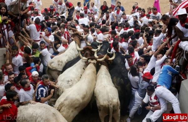 رهيبة مهرجان مطاردة الثيران اسبانيا 3909965565.jpg