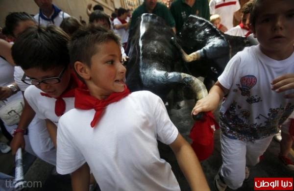 رهيبة مهرجان مطاردة الثيران اسبانيا 3909965567.jpg