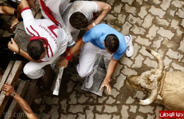 رهيبة مهرجان مطاردة الثيران اسبانيا 3909965571.jpg
