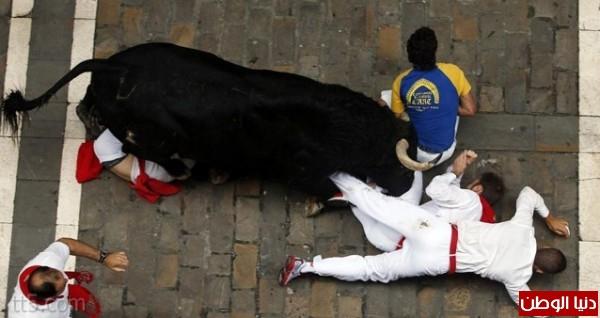 رهيبة مهرجان مطاردة الثيران اسبانيا 3909965573.jpg