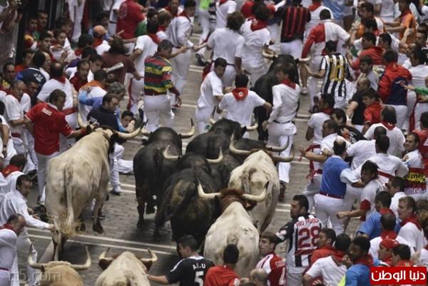 رهيبة مهرجان مطاردة الثيران اسبانيا 3909965582.jpg