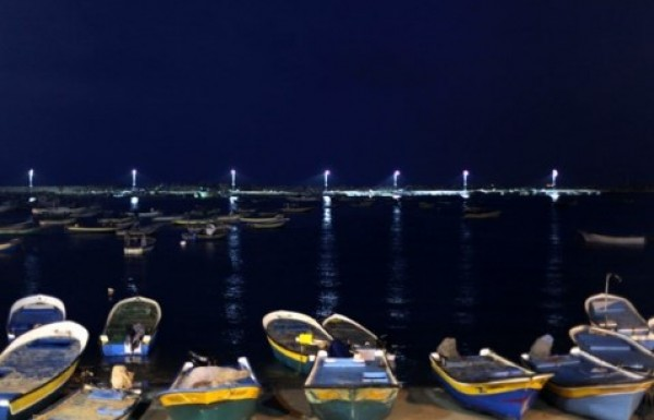 شاهد بالصور توافر للأسماك بغزة 3909985382.jpg
