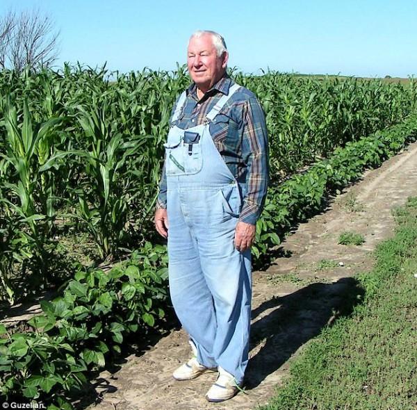 تعديلات وراثية مزارع أمريكي ينتج