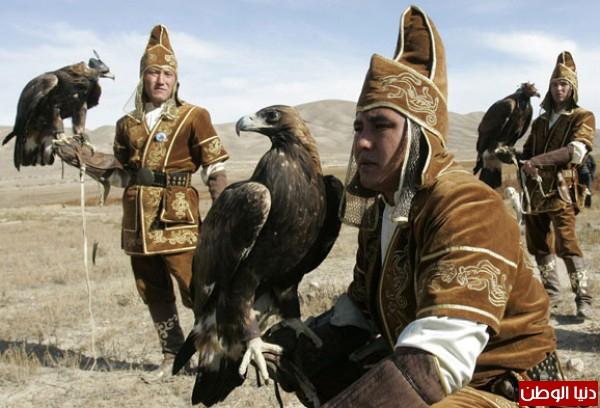 """ومعلومات أقوى الطيور الجارحة العالم """" العقاب""""2013, تقرير 3910012072.jpg"""