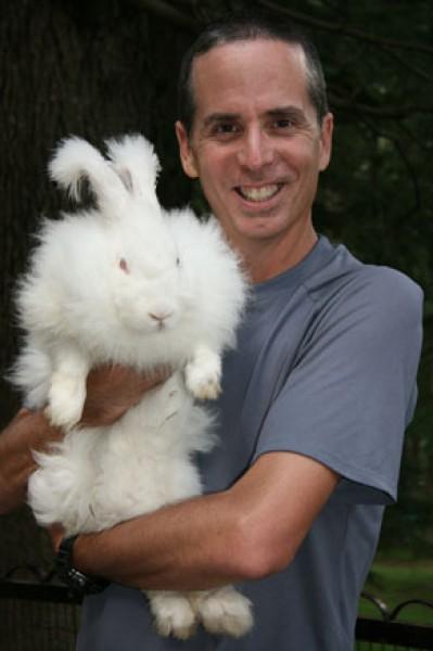 مجموعة صور7belk الأرنب الشعر الكثيف2013,تقرير الأرنب الانجورا الأغرب 3910013432.jpg