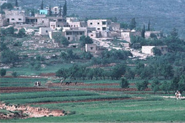 """بقعه فلسطين """"مرج عامر """""""