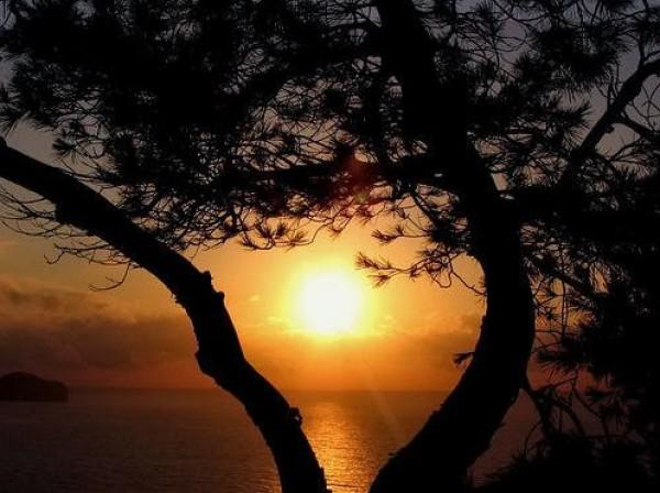 غروب الشمس بطرق جمالية 3910085452.jpg