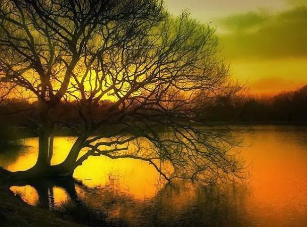 غروب الشمس بطرق جمالية 3910085453.jpg