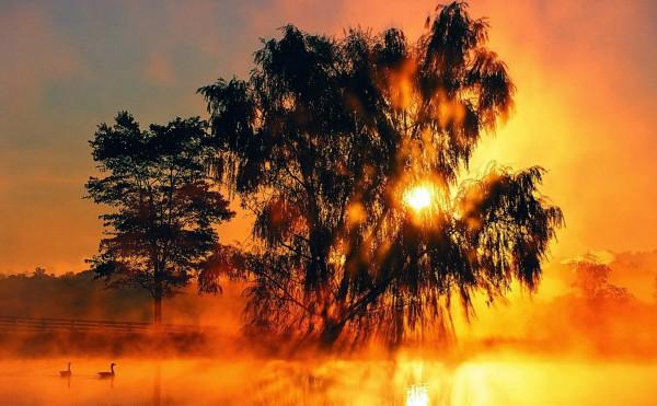 غروب الشمس بطرق جمالية 3910085454.jpg