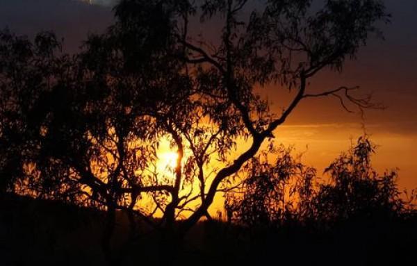 غروب الشمس بطرق جمالية 3910085458.jpg