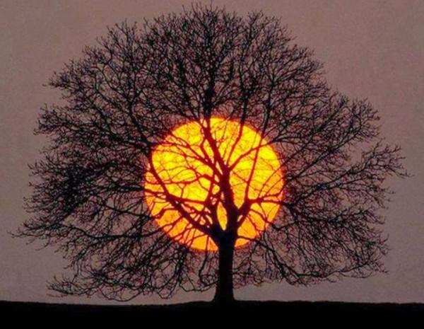 غروب الشمس بطرق جمالية 3910085459.jpg