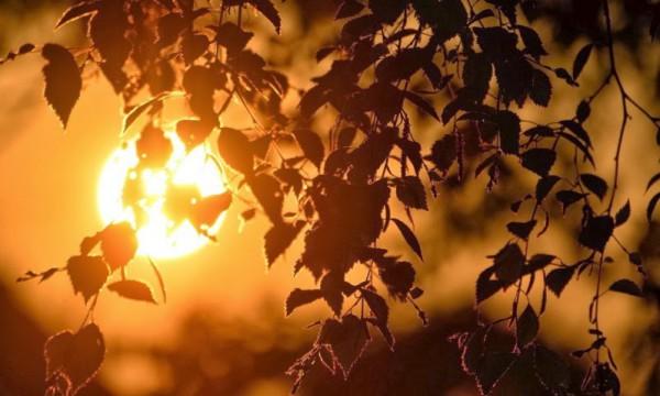 غروب الشمس بطرق جمالية 3910085460.jpg