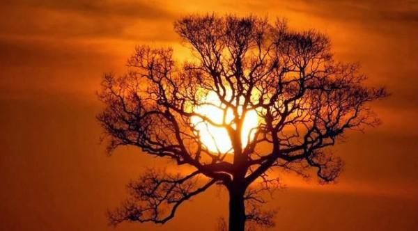 غروب الشمس بطرق جمالية 3910085462.jpg