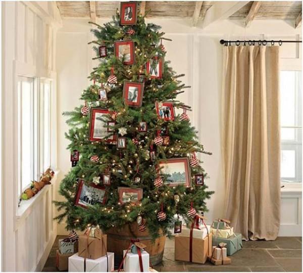 زيتة عيد الميلاد 3910114151