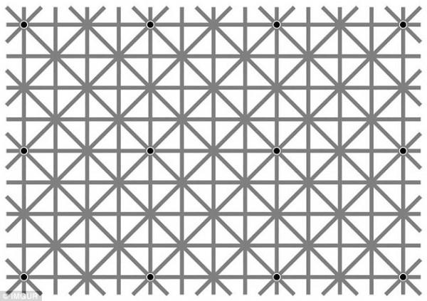 كم نقطة سوداء في الصورة خدعة بصرية وش حلها 1