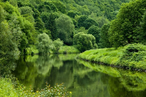 الطبيعة الخلابة في الريف الألماني 3910747395