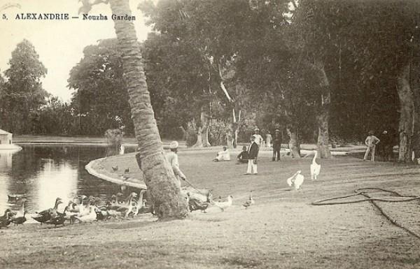حدائق مصر قديمًا 3910779731