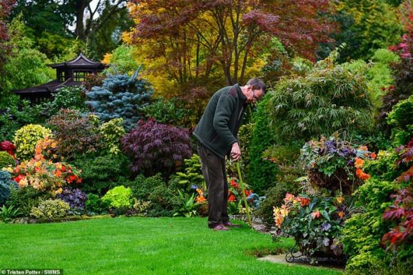 زوجان يقضيان 37 عاما في تزيين حديقتهما  3911030844
