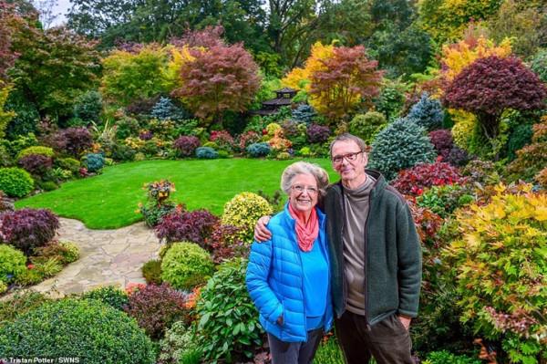 زوجان يقضيان 37 عاما في تزيين حديقتهما  3911030849
