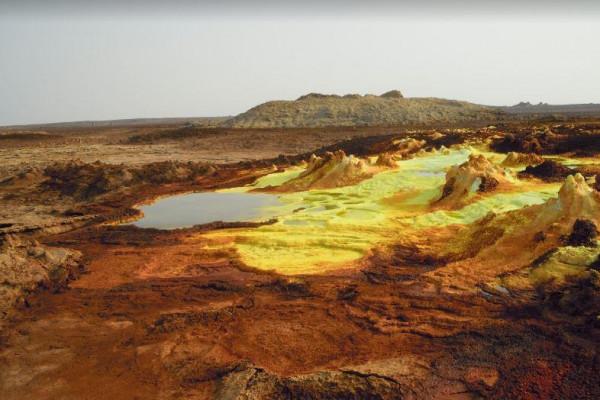 """Image result for """"دالول"""" في إثيوبيا"""