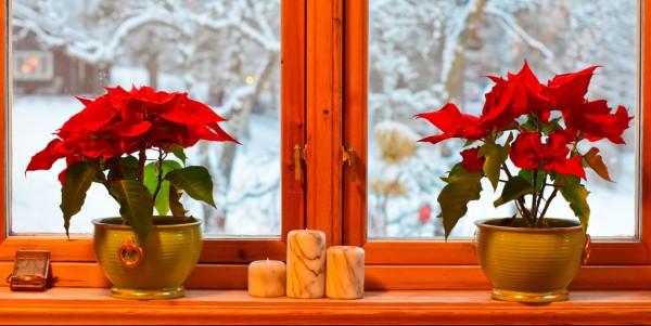 أفكار لتزيين نوافذ منزلك 3911043316