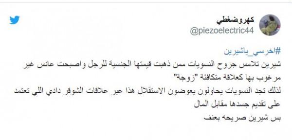 الفنانة شيرين تثير ضجة وانتقادات حادة بعد اساءتها لنساء السعودية 4