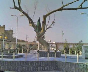 «شجرة آدم»زرعها النبي إبراهيم الخليل ...  متنزه عراقي حيث يلتقي دجلة والفرات