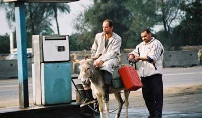 صور طريفة من مصر