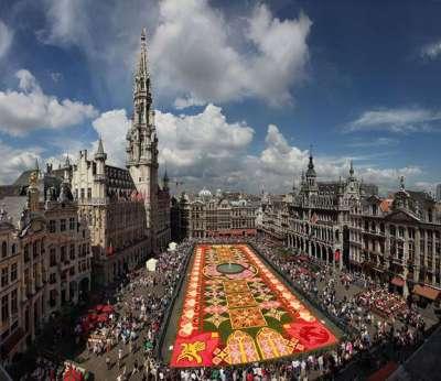 السجادة العجيبة في بلجيكا 9998297552.jpg