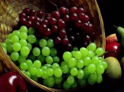 العنب أغنى الفواكه الاطلاق
