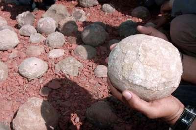 العثور ديناصورات الشيشان 9998324248.jpg