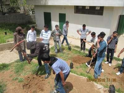 زراعة اشجار زيتون في مدرستي ذكور واناث بيت اكسا على شرف يوم الأرض