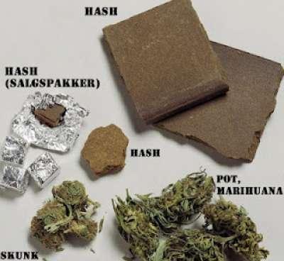 ضبط تاجر مخدرات بحوزته 40 فرش حشيش في الطالبية لبيعها في العيد
