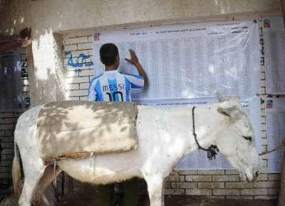 حصاد الانتخابات المصرية في اليوم الأول .. معلومات وصور