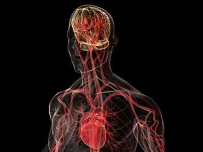 الدماغ يزيح القلب عن عرش الحب
