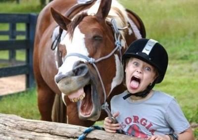 أطرف الحيوانات المضحكة لعام 2012 9998358398.jpg