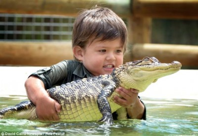بالصور.. طفل الـ3 سنوات يقهر تمساحاً مشاكساً