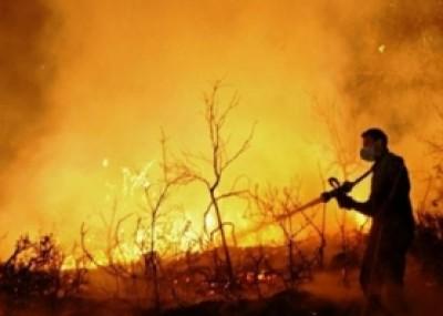 حريق هائل في السوق الشرقي بمدينة نابلس