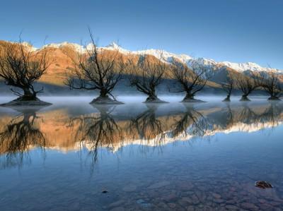جمال الطبيعة في صور