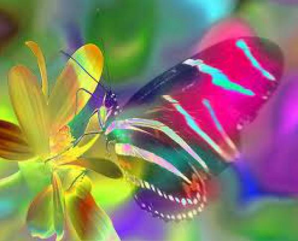 صحتك والألوان