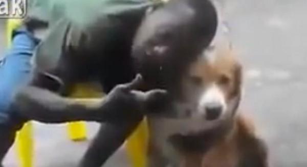 """بالفيديو ..كلب يعض صديقه الشاب الذي حاول التقاط الـ""""سيلفي"""""""