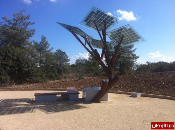 سويد يفتتح الشجرة الشمسية الأولى في البلاد