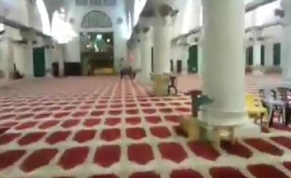 فيديو - الأذان يصدح في المسجد الأقصى رغم منع سلطات الاحتلال الصلاة فيه